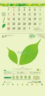 グリーン3ヶ月eco -上から順タイプ- / TD-787