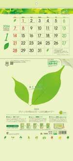 グリーン3ヶ月eco S -上から順タイプ- / TD-975