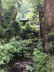 大雄山最乗寺2