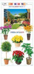 観葉植物表紙