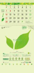 グリーン3ヶ月eco -上から順タイプ-表紙
