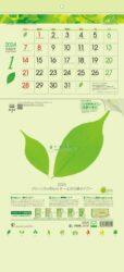グリーン3ヶ月eco S -上から順タイプ-表紙
